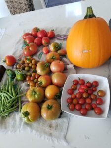 What? Pumpkins aren't just for jack-o-lanterns?